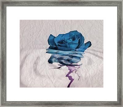 Rose En Variation - 02bt01 Framed Print by Variance Collections