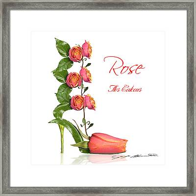 Rose Flos Calceus Framed Print by Blanchette Photography