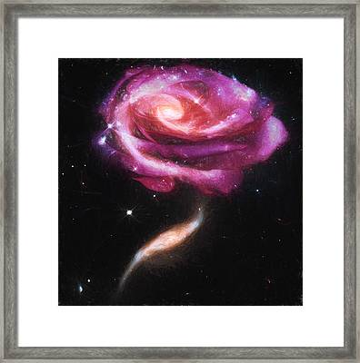 Rose Galaxies Framed Print by John Haldane