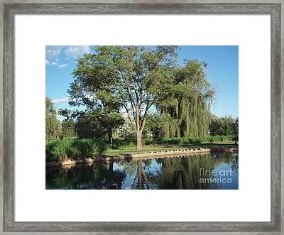 Framed Print featuring the photograph Rose Garden  by Jeannie Rhode
