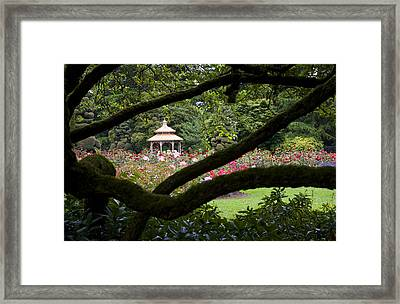 Framed Print featuring the photograph Rose Garden Window by Sonya Lang
