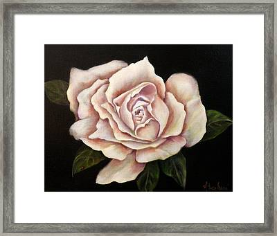 Rose Glow Framed Print