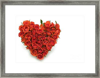 Rose Heart Framed Print by Boon Mee