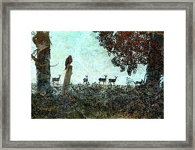 Rose Hill - Autumn Framed Print