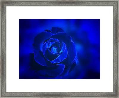Rose In Blue Framed Print by Sandy Keeton