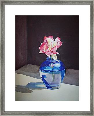 Rose In The Blue Vase II Framed Print by Irina Sztukowski