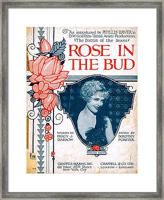 Rose In The Bud Framed Print by Mel Thompson