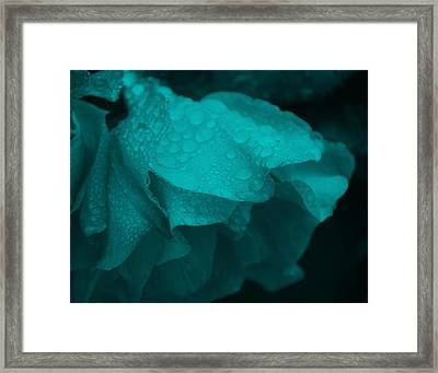 Framed Print featuring the photograph Rose In Turquoise by Jocelyn Friis