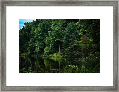 Rose Lake Beauty Framed Print