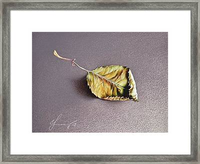 Rose Leaf Framed Print by Elena Kolotusha