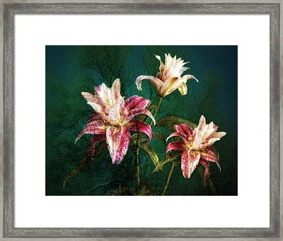 Framed Print featuring the photograph Rose Lily Number Three by Bob Coates