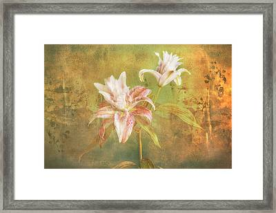 Framed Print featuring the photograph Rose Lily Silk by Bob Coates