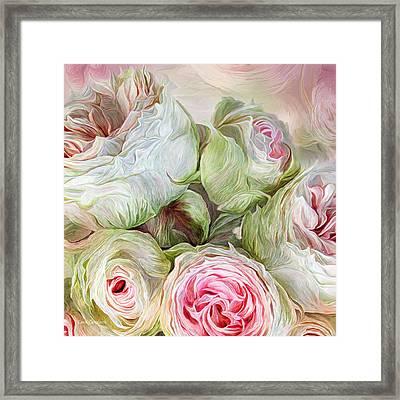 Rose Moods - Harmony Framed Print