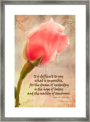 Rose Of Hope Framed Print