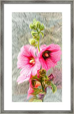 Rose Of The North Abstract. Framed Print