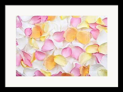 Gentle Petals Framed Prints