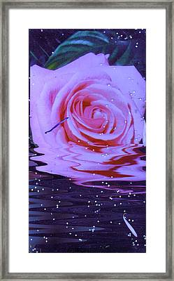 Rose Resurrection Framed Print by Anne-Elizabeth Whiteway