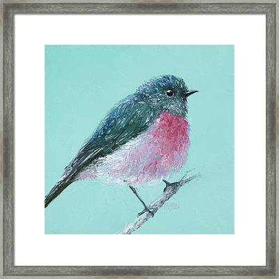 Rose Robin Framed Print