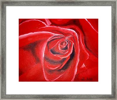 Rose Framed Print by Sandra Yegiazaryan