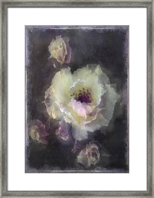 Rose Spray Framed Print by Jill Balsam