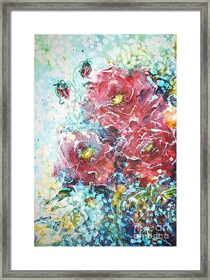 Rose Summer Delight Framed Print