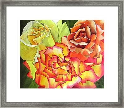 Rose Trio Framed Print by Sacha Grossel