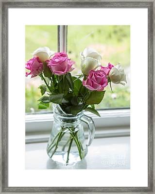 Rose Vase Framed Print by Iris Richardson