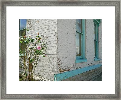 Rose White Blue House Framed Print by Kathy Barney