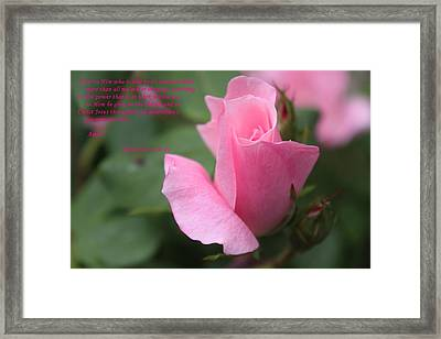 Rose With Scripture Framed Print by Carolyn Ricks
