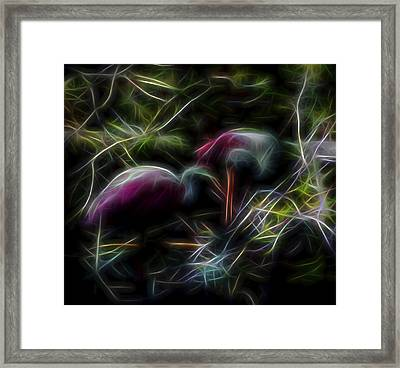 Framed Print featuring the digital art Roseate Spoonbills 2 by William Horden