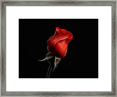 Rosebud Framed Print by Sandy Keeton