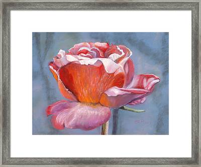 Rosefloria Framed Print by Julie Maas