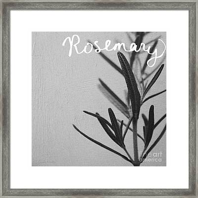 Rosemary Framed Print by Linda Woods
