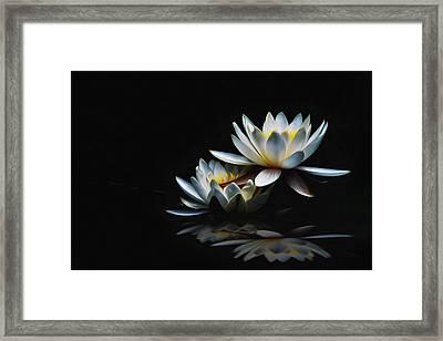 Rosen Framed Print by Barbelotta