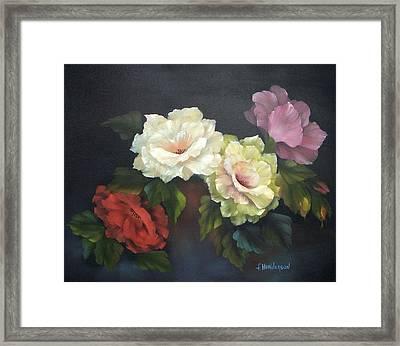 Roses-4-you Framed Print