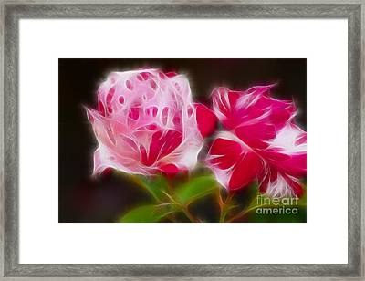 Roses 6221-fractal Framed Print by Gary Gingrich Galleries