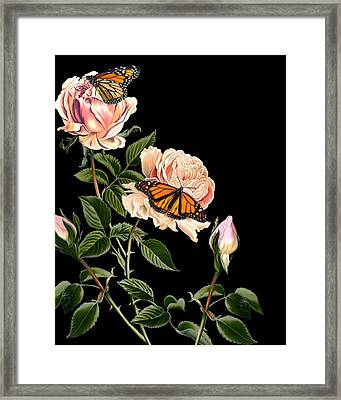 Roses And Butterflies Framed Print