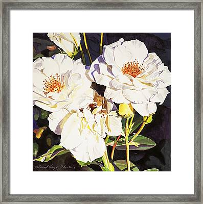 Roses Blanc Framed Print by David Lloyd Glover