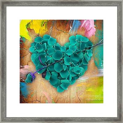 Roses Collection Framed Print