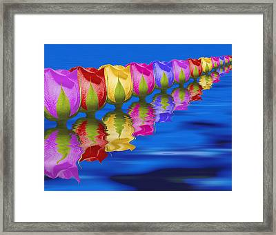 Roses Floating Framed Print