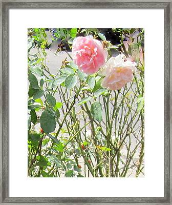 Missing You Greeting Card Framed Print