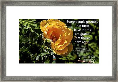 Roses Have Thorns Framed Print