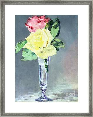 Roses In A Champagne Glass Framed Print by Edouard Manet