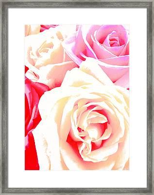 Roses Framed Print by Kara  Stewart