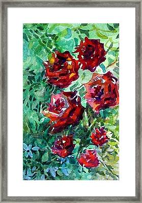 Roses Framed Print by Mindy Newman