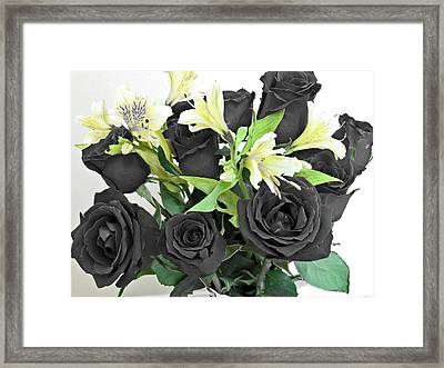 Framed Print featuring the photograph Roses Of A Different Color by Ella Kaye Dickey