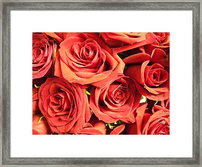 Roses On Your Wall Framed Print