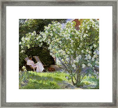 Roses Framed Print by Peder Severin Kroyer