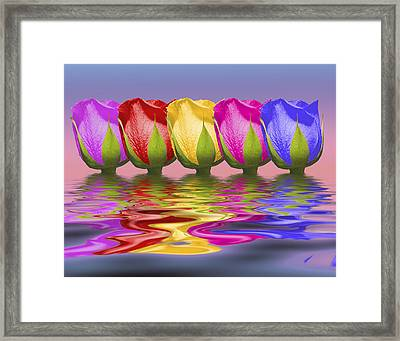 Roses Rising Framed Print by Tom Mc Nemar