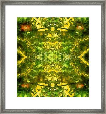 Roses Run Riot Framed Print by Joseph Sabater